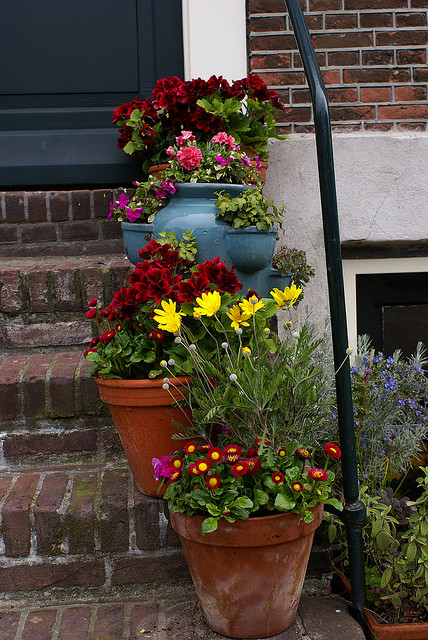 Flower pots on the staircase
